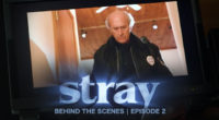 "Paul Kandarian talks about the onset shenanigans on Fat Foot Films latest short film ""STRAY""."