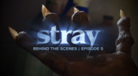 "An inside look at the special effects makeup used on Fat Foot Films newest short film ""Stray""."