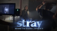 No Dan? No Ed? No problem! An inside look on a day of production without a co-director and a producer on the set of STRAY. To stay up to date […]