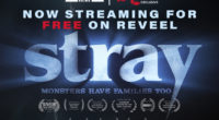 "We are excited to announce that Fat Foot Films latest short film ""STRAY"" is available streaming for free! Just go to REVEEL sign up and start watching. So damn easy […]"